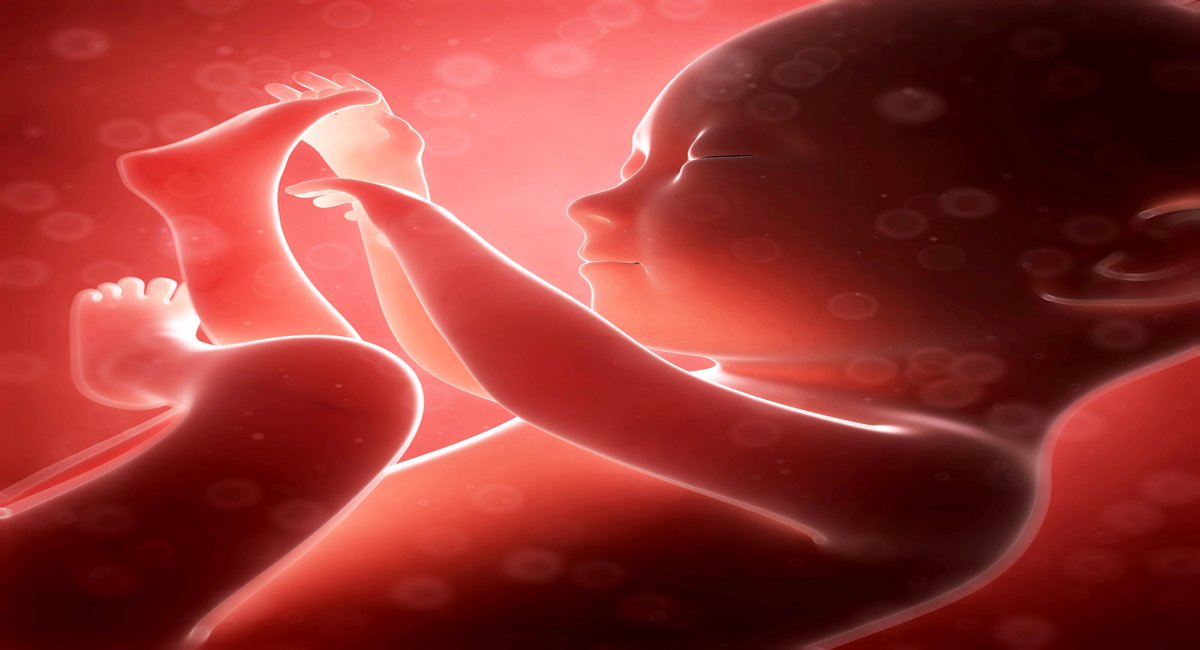bleeding during early pregnancy