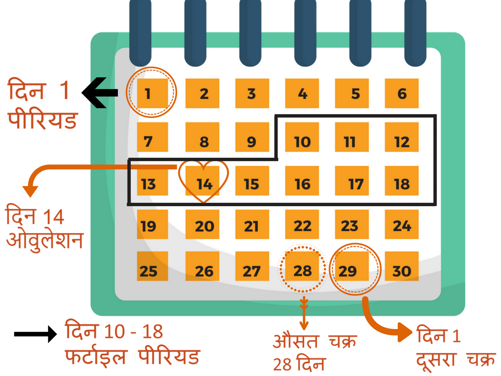 Pregnancy Care In Hindi Pdf