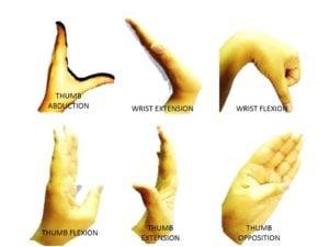 tendon-exercises