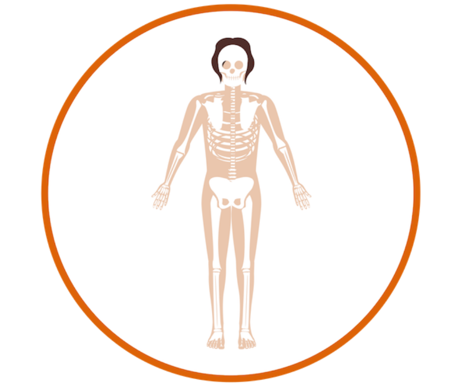 peds-rheumatology